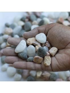 Mixed Pebbles (SS)